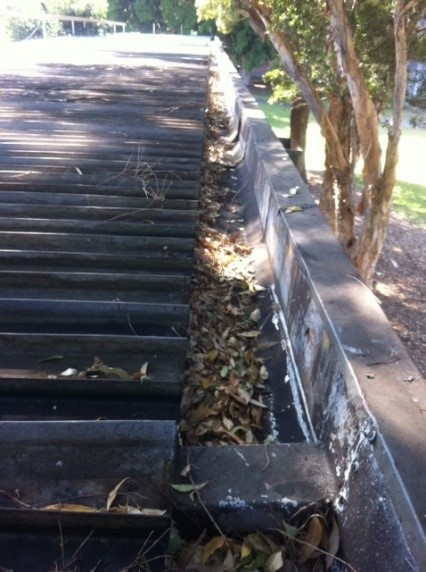 Gutter Cleaning Sydney Inner West